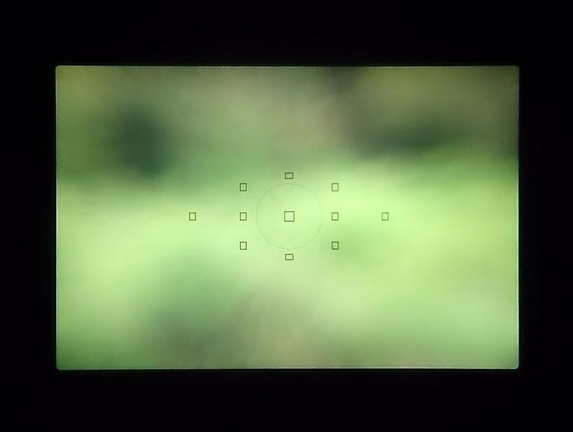 ↑11点のAFセンサーが採用されているEOS 6D。そのカバー範囲は菱形状になっており、1点1点の間隔も広めになっている