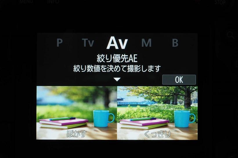 ↑ビジュアルガイドの例。絞り優先オートを使って絞りを変更することで背景のボケ描写が変化することを作例写真で表現している