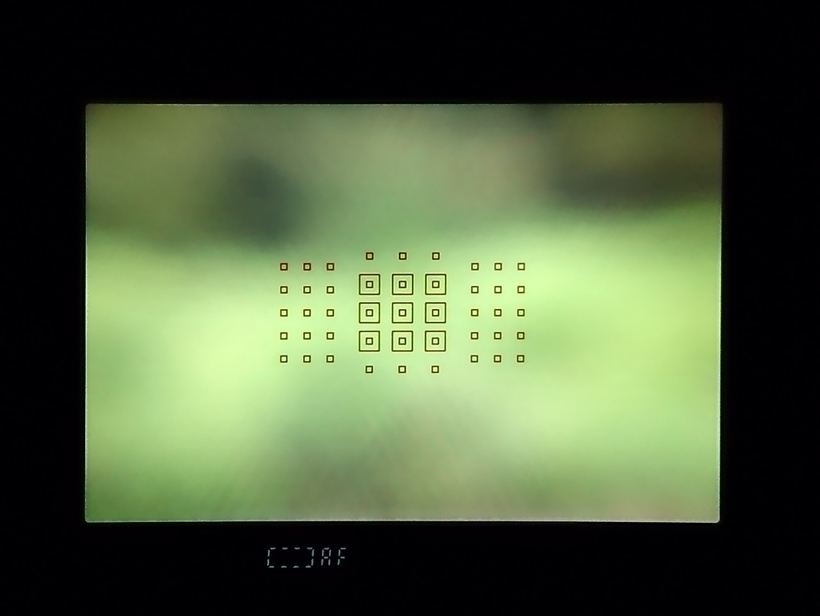 ↑EOS 6DマークⅡのAFは、オールクロス45点センサーを採用。画面中央とその周辺が、AF測距点で高密度にカバーされている