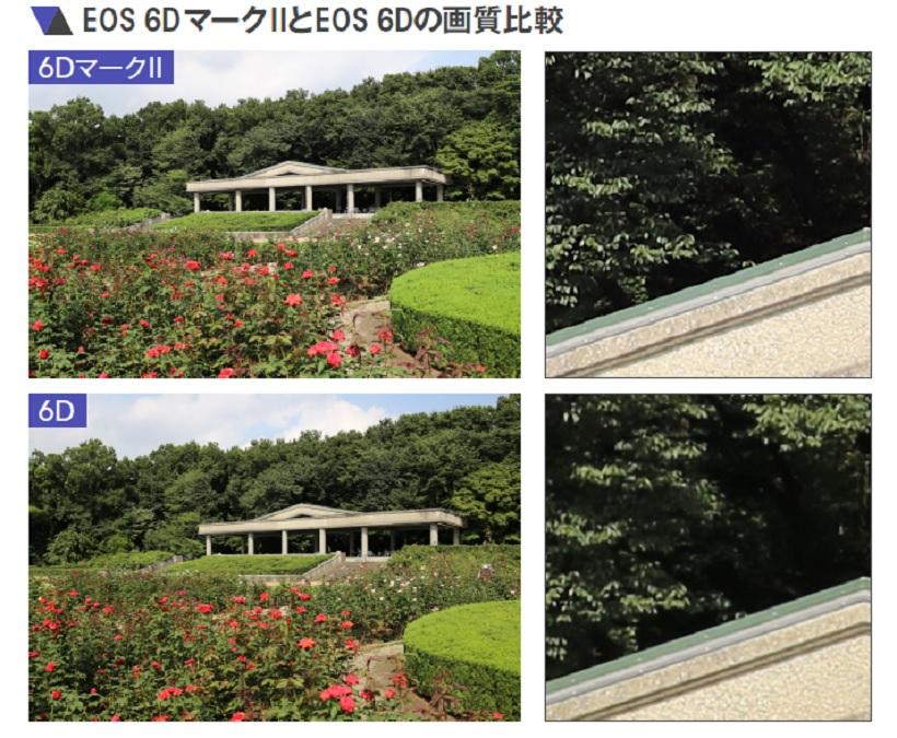 ↑非常によく似た描写で、細部を拡大チェックしても、細かい部分の描写に差はあまり感じない。ただし、色再現に少し差が出た。EOS 6DマークⅡのほうがクセがなく自然に感じる