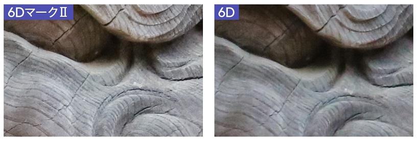 ↑EOS 6DマークⅡは、細部のシャープ感が高くて、アウトフォーカス部や暗部のノイズ感も少ない。EOS 6Dは、比較的にシャープさに欠ける描写で、ノイズ感も少しだけ目立つ。また、アウトフォーカス部や暗部などに微妙な色ムラが感じられる