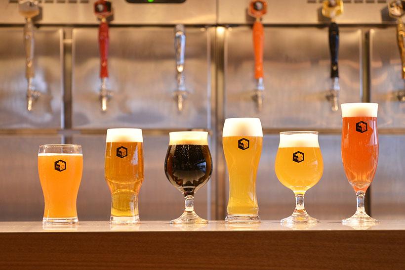 ↑タップ数は34と、かなり多め。既存店でも扱っているレギュラー6種のビールを筆頭に、季節やフェアに応じて様々なスタイルの味わいを提供していくそうです