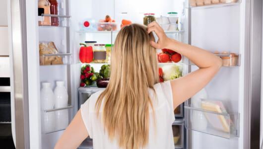 「冷蔵庫の違い、わかんねぇ…」という人に! 500L台・最新5モデルの「冷蔵/冷凍/野菜室」を家電のプロが徹底ガイド