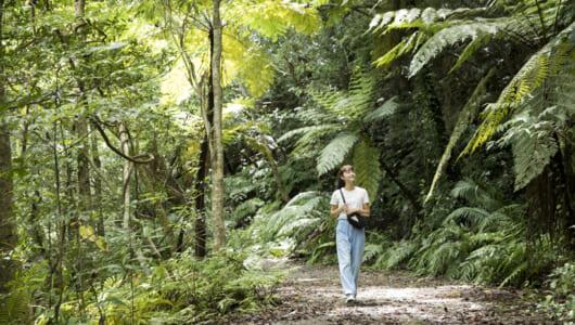 太古の森と海辺のハートが待っている! 奄美大島の大自然を全身で満喫