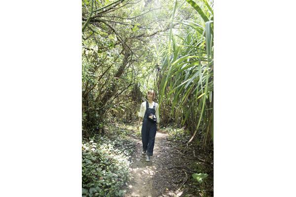 ↑南国の植物が生い茂るトンネルを抜けた先がビーチ