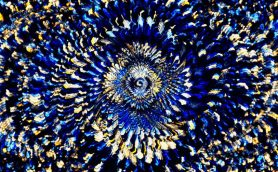 【ムー時空の神秘】地球外生命体が作ったプログラムなのか?「同時発明」が示唆する「アカシックレコード」の存在