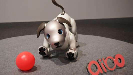 """【動画あり】ソニーの愛犬ロボット""""aibo""""、ますます可愛くなって11年ぶりに復活!"""