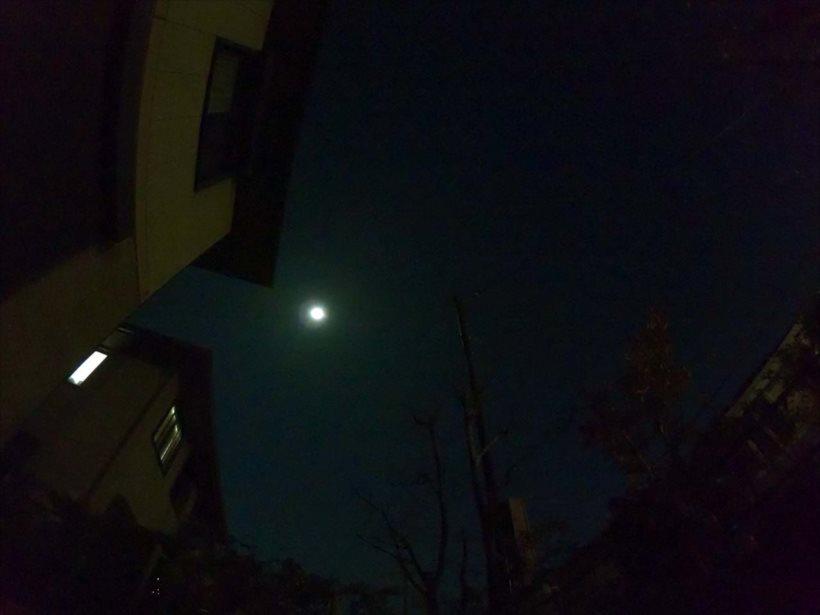 20171107_y-koba2_月夜_R