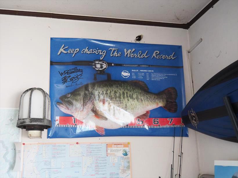↑2009年に琵琶湖で釣り上げられ世界記録に認定された73.5cmのバス