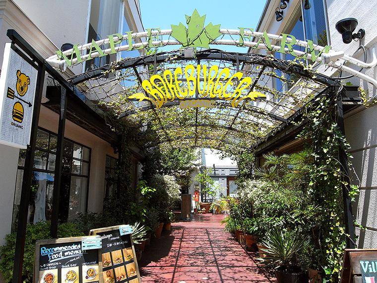 ↑日本1号店、「メープルファーム」の自由が丘店