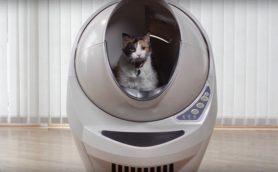 これが猫のトイレだと!? 「ロボット化」が進み、砂はいずれ時代遅れになるかも……