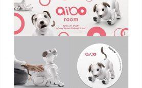 写真じゃ伝えきれないこの愛くるしさ! 新生aiboといち早く触れ合える魅惑の「aibo room」が1月11日から渋谷に登場