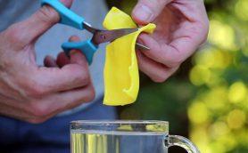 もはや常備品としてストックすべき! ちょっとした修理に役立つ、お湯で柔らかくして自在に変形できるプラスチック製の「FORMcard」