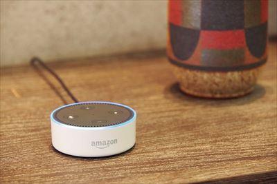 ↑コンパクトサイズのEcho Dot(写真・5980円)のほか、上位機種のEcho Plus(1万7980円)もあります