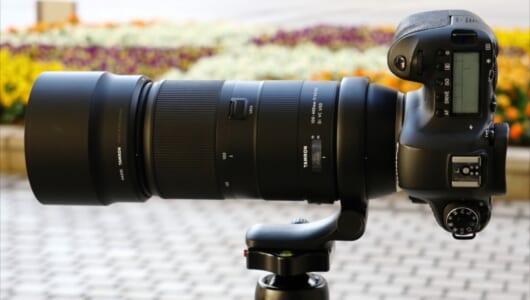 超望遠レンズがこの軽さ&価格!? とにかく撮影が楽しくなる「タムロン 100-400mm」濃厚レビュー