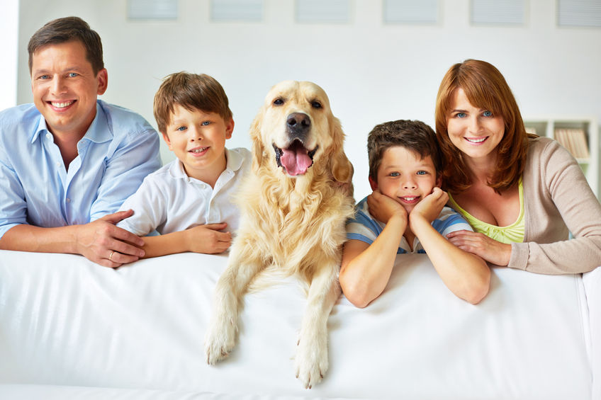 31226273 - smiling family of four with a dog