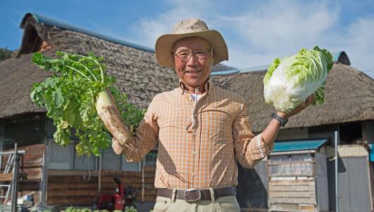 マルチ野菜の白菜と大根をフル活用! 困った時の冬レシピ3選