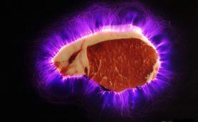 【ムー謎の料理法】電気で生肉がおいしくなる? 謎の電気肉01/グルメの錬金術師