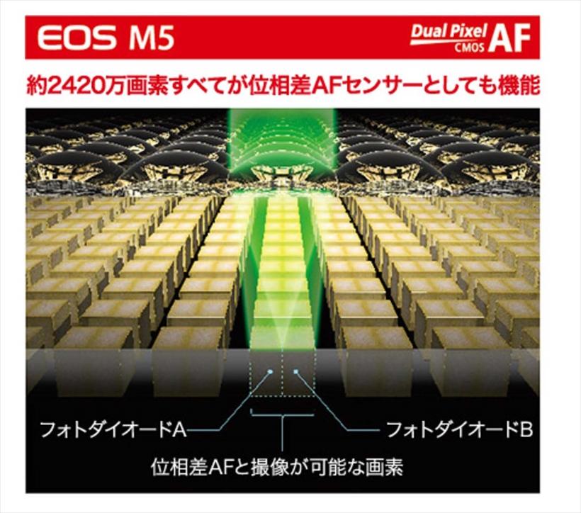 ↑「デュアルピクセル CMOS AF」では、すべての画素が位相差AFセンサーとして機能する。撮像面の80×80%の範囲で高速AFが作動