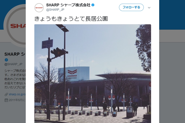 【Qoly】180213_セレッソ大阪SHARP画像