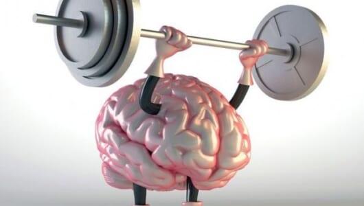 家事こそが脳を鍛える秘技だったのか!