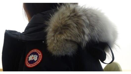 【大人の着こなし考】世界的に絶好調の「カナダグース」。あなたは偽造品を手にしていませんか?