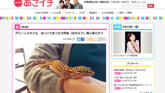 新垣結衣も飼っている!? NHK「あさイチ」の爬虫類特集に反響の声続出!