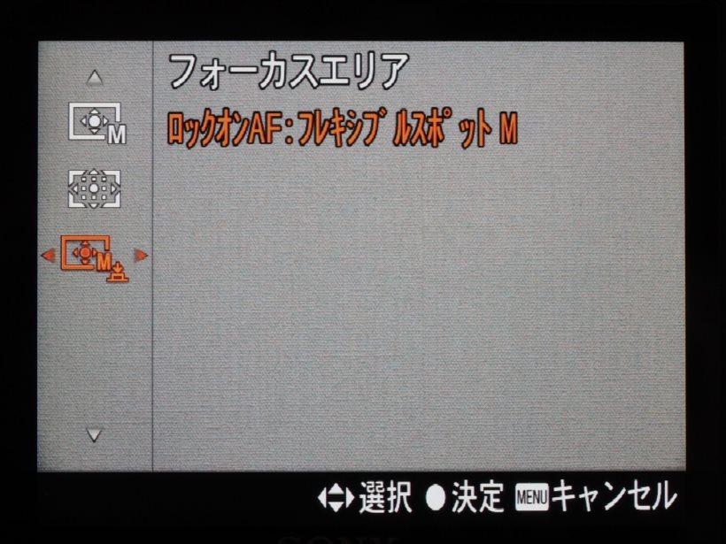 20180227_y-koba6 (10)