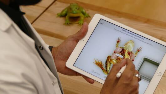 """新iPadがiPad Proより3万円以上安いけど、もしかして""""神タブ""""ですか?"""