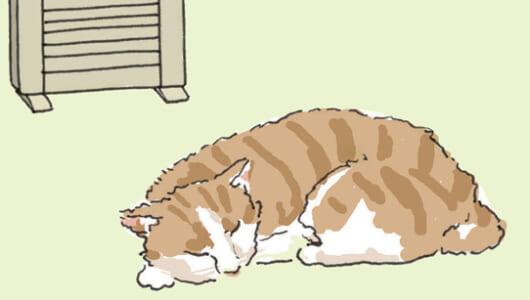 【保存版】ペットのいる家の「リフォーム」全解説!! 壁・床の素材選び~ニオイ・キズ対策まで