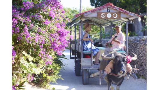 今夏のリフレッシュ旅行にいかが? 南国リゾート「石垣島」まったり弾丸旅