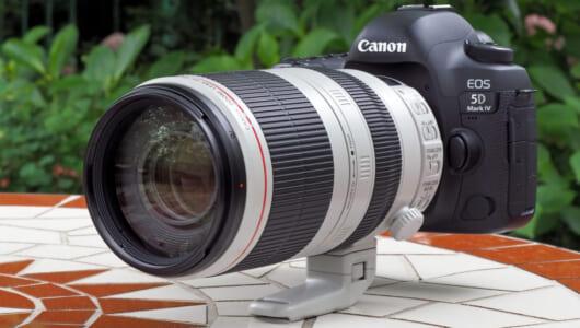 """""""遠くを撮りたい""""なら買って損ナシ!! キヤノンの超望遠レンズ「100-400mm」をプロが賞賛する理由"""