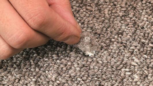 【保存版】誰でもできるカーペットの簡単メンテナンス術! シミ/焦げ/穴の対処、パイルの起こし方