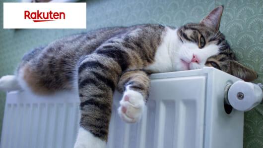 寒~い冬はもうすぐだから――ほっこり暖かリラックス家電がフラッシュセールでお買い得!!