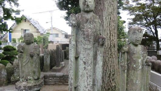 【ムー妖怪図鑑】夜な夜な遊び歩くイケメンの正体