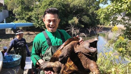 的場浩司が超巨大ワニガメを捕獲!『池の水ぜんぶ抜く大作戦3時間SP』11・18放送