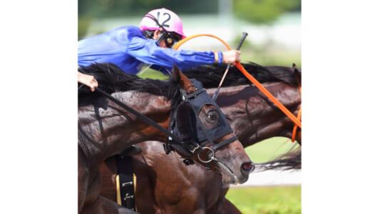 かっこいい競走馬の写真を撮りたい!! 競馬観戦型レストラン貸し切りエリア利用の撮影会が開催決定!