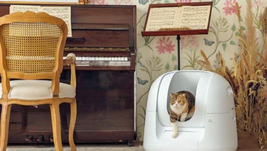 やっぱり猫に小判?クラウドで1億円以上も集めた最新版「ハイテク猫用トイレ」