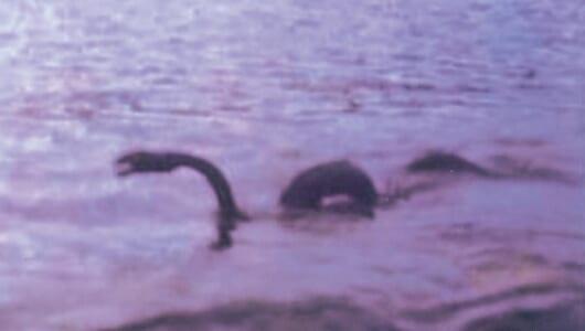 【ムーUMA情報!】恐竜の生き残りか? 各地で恐れられるご当地モンスターたち