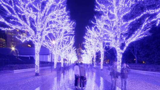 クリスマスシーズンの会話のネタに! 「イルミネーション」って英語で何て言う?
