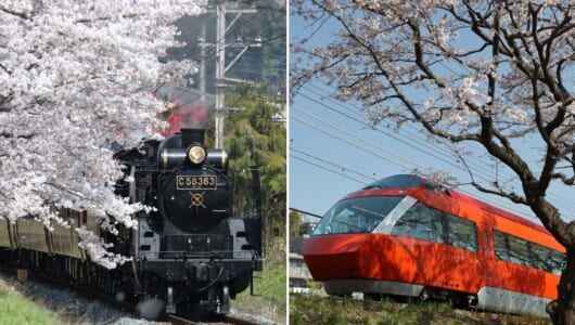 【2019年版】全国津々浦々を巡った鉄道ライターが薦める「桜と鉄道」撮影スポット集(前編)