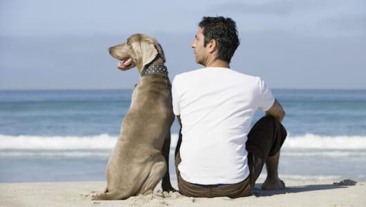「犬は飼い主に似る」は本当だった! 心理学者が発見した「ヒトと犬の性格の相関関係」