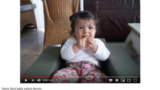 【必見オモシロ動画】すっぱ~い! レモンに挑戦するも顔がキューッとなってしまう女の子