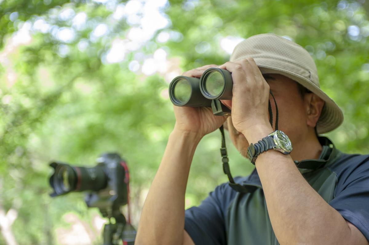 ↑撮影中も双眼鏡で動物の顔の向きや立ち方といったなどの状況を観察しながらシャッターチャンスを待つという