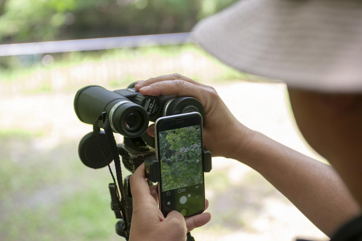 ↑スマホの画面を見ながら静止画や動画の撮影ができる。画面が大きくシャッターシャンズを狙いやすい