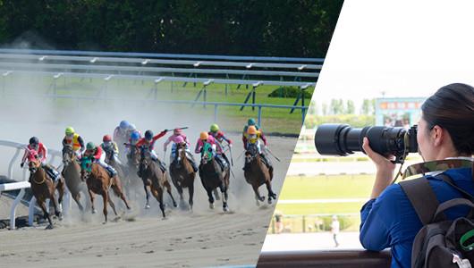 """""""良い写真""""はどうすれば撮れる? 颯爽と駆ける競走馬が教えてくれた2つのヒント"""