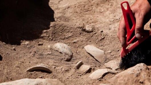 も〜っと長かった! 人類とテクノロジーの歴史に新発見