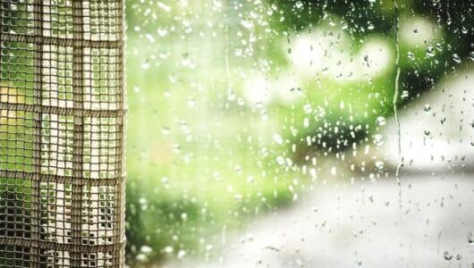 カビは家中に潜んでいる!梅雨に行いたい「カビ対策」
