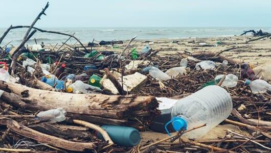 世界の海で異常事態!今こそ知りたい「マイクロプラスチック」とは?