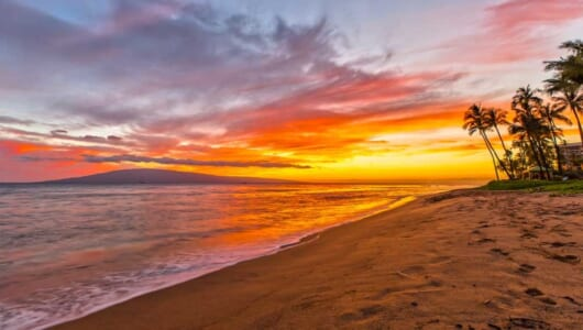 この夏「ハワイのビーチ」に行くなら必見! 現地在住ライターが教えるマストアイテム6選